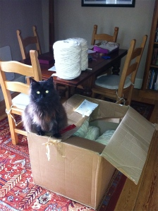 Larry supervises the unpacking